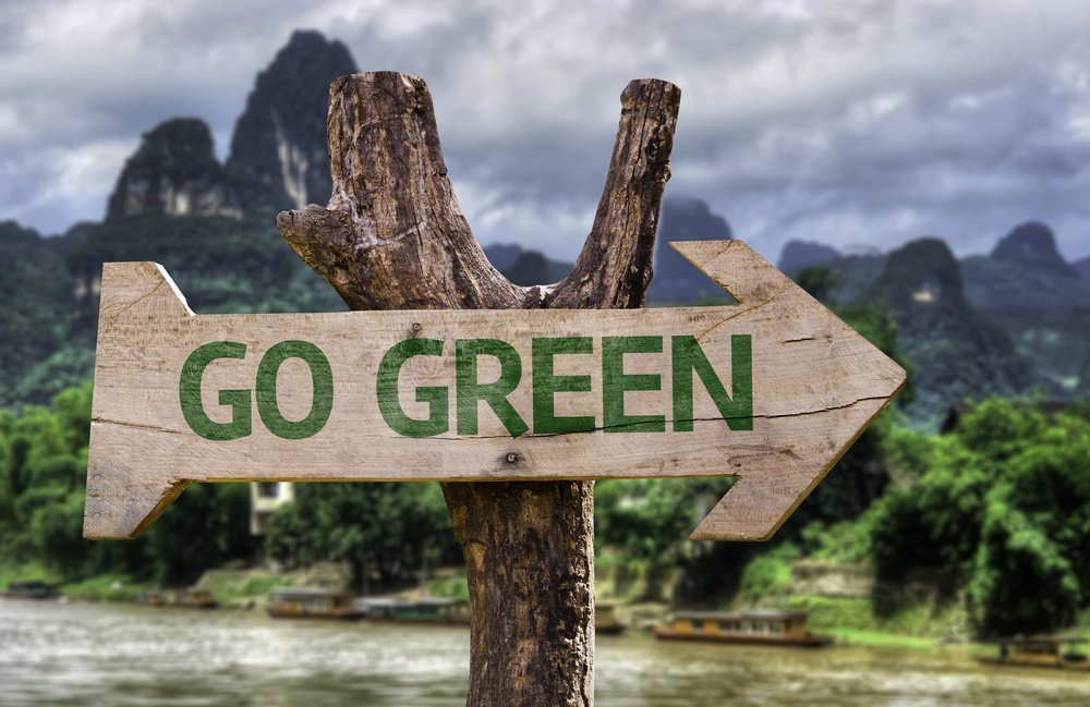 Cuatro negocios eco friendly que la están rompiendo